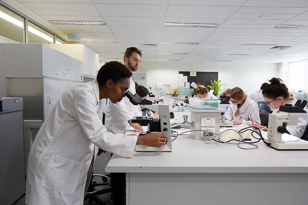 Research students in lab coats looking through microscopes