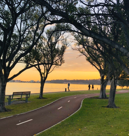 Bike path winding through the trees by the Swan River as the sun rises