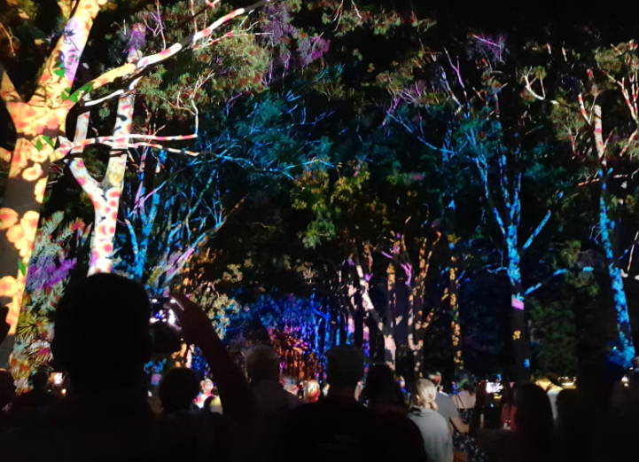 Colourful light display in the trees at Kings Park from the opening event of Perth Festival, Boorna Waanginy: The Trees Speak